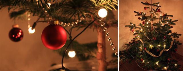Как заполучить ёлку под новый год бесплатно